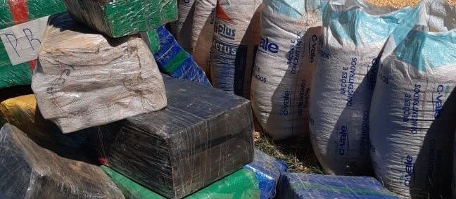 PRF já apreendeu 106 toneladas de maconha no Paraná, em 2020