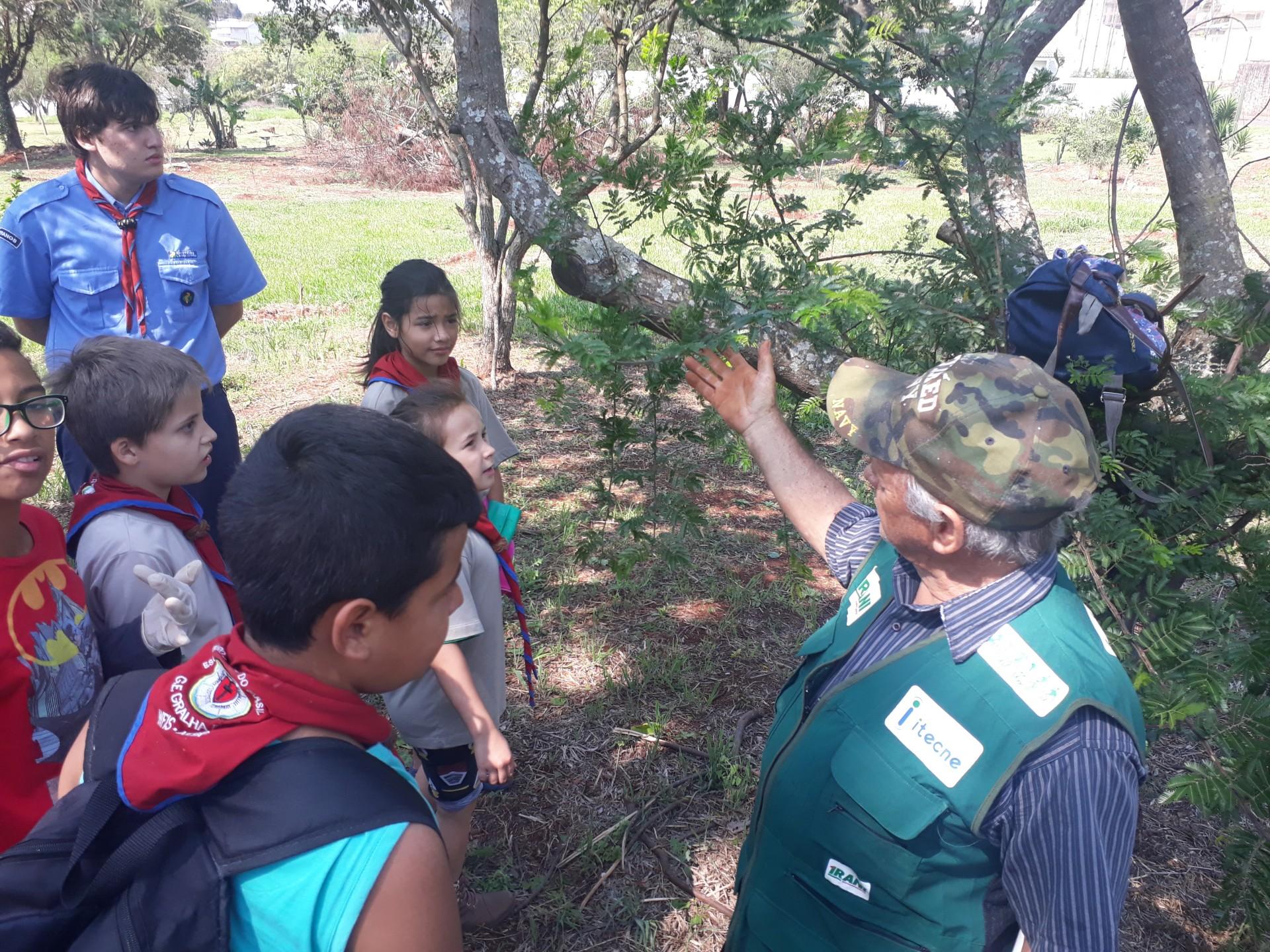 Dia da Árvore é marcado com ações em Cascavel