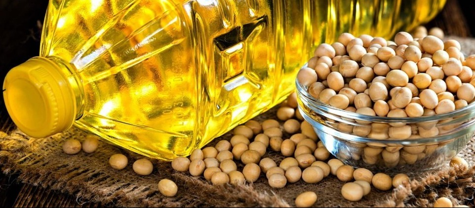 Demanda de óleo de soja volta a crescer