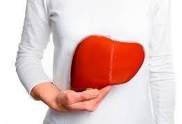 Uopeccan comemora o 100 transplantes de fígado