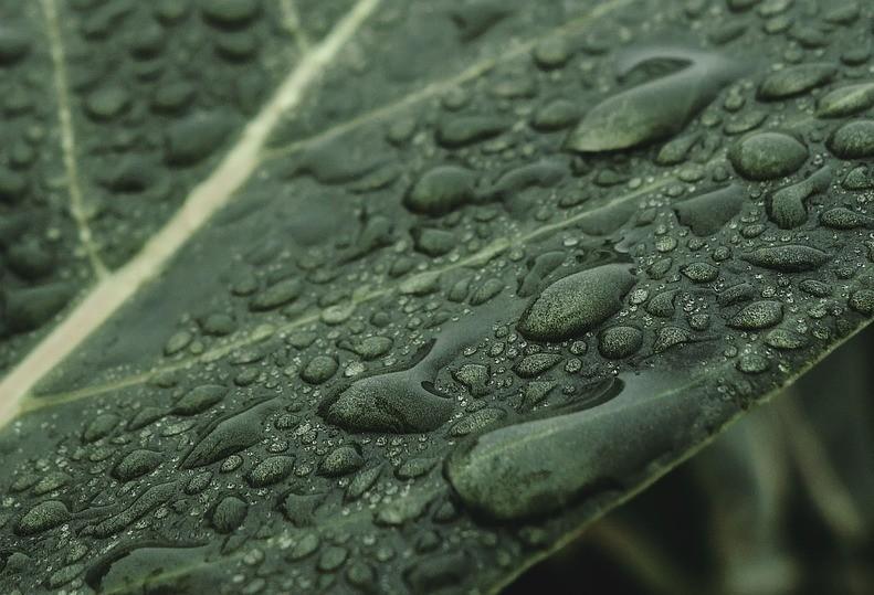 Clima quente com possibilidade de chuvas ocasionais