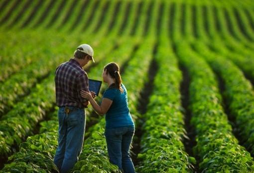 Decreto permite aos técnicos agrícolas o desenvolvimento de projetos sem limite de valor