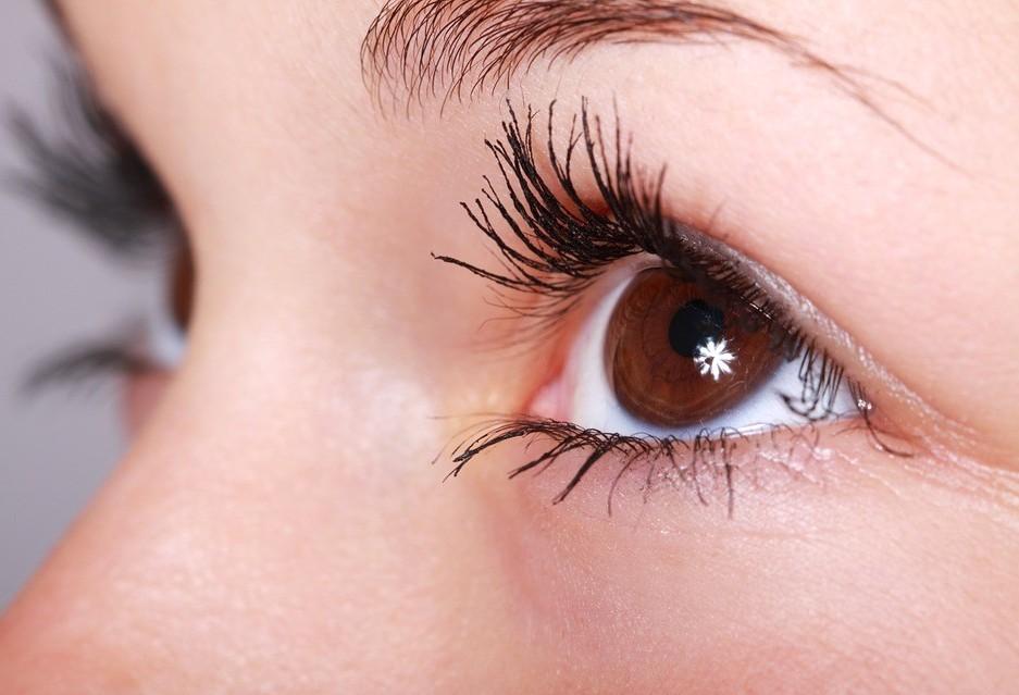 Banco de Olhos suspende a captação de córneas em Cascavel