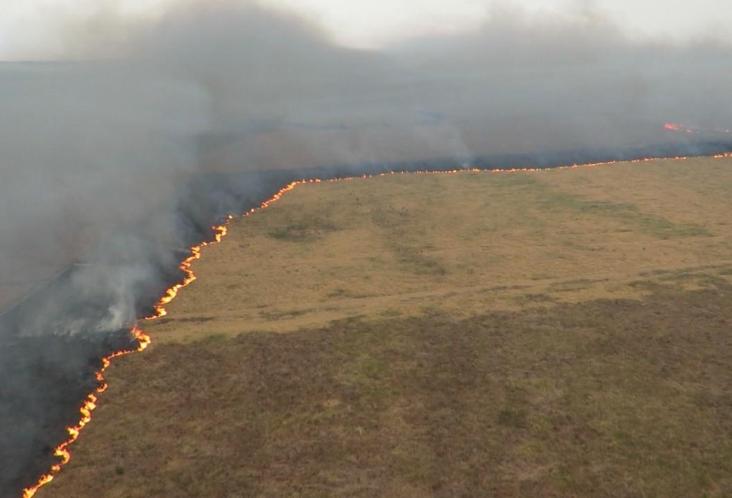 Combate às chamas já dura mais de uma semana em Ilha Grande