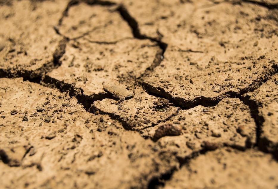 Falta de chuvas prejudica agricultura e turismo rural no Oeste do Paraná