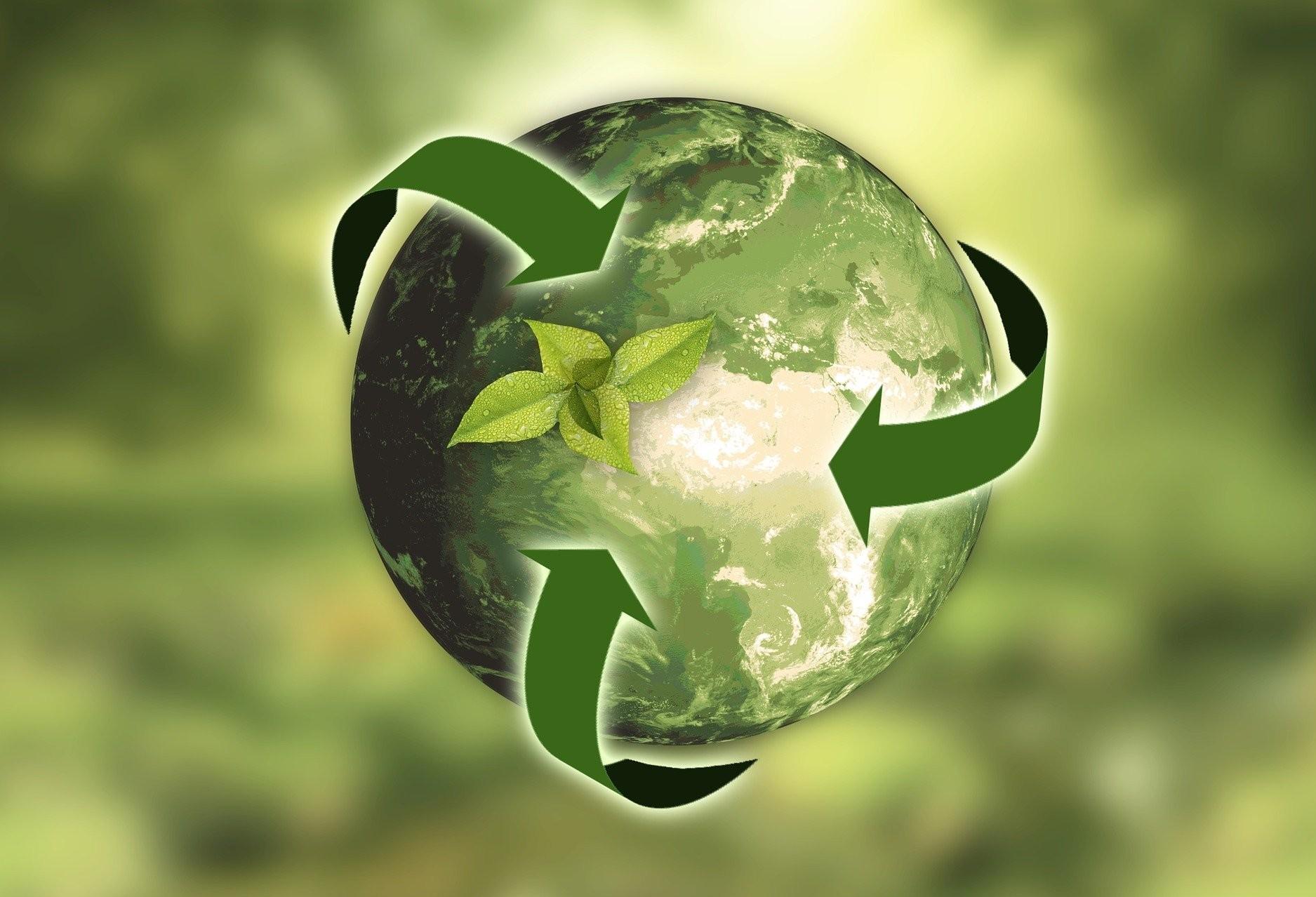 Mercado de Carbono