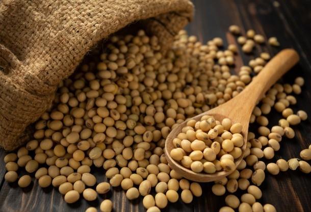 Brasil se consolida como o maior produtor de soja em 2018