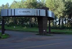 MST é acusado de vender lotes da Araupel