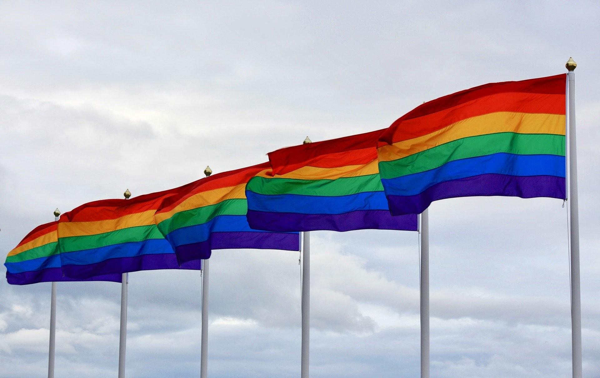Dia Nacional do Orgulho LGBTI: Data Celebra a luta por respeito e direitos iguais