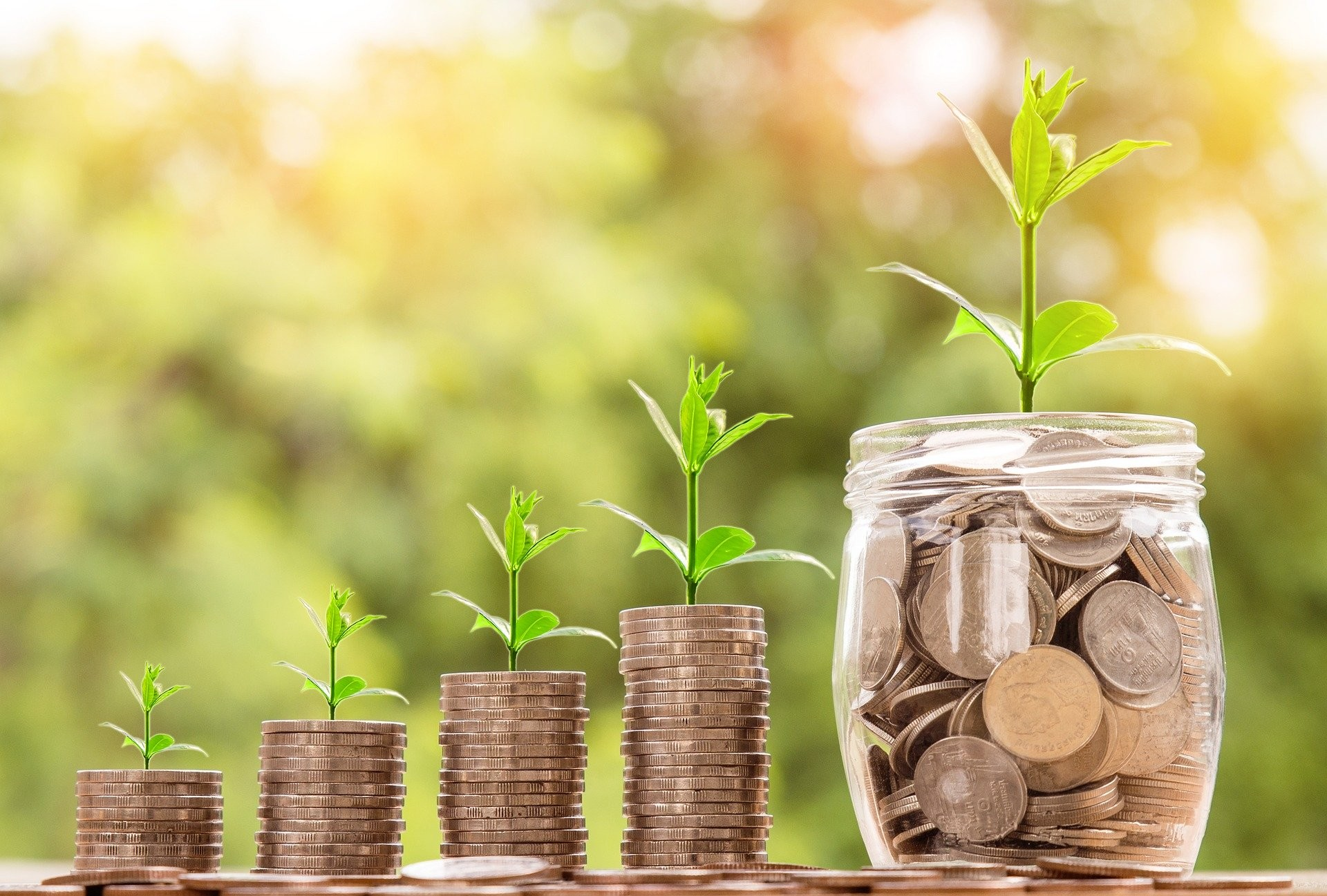 Empresa troca pontos na compra de  produtos por benefícios para o agricultor