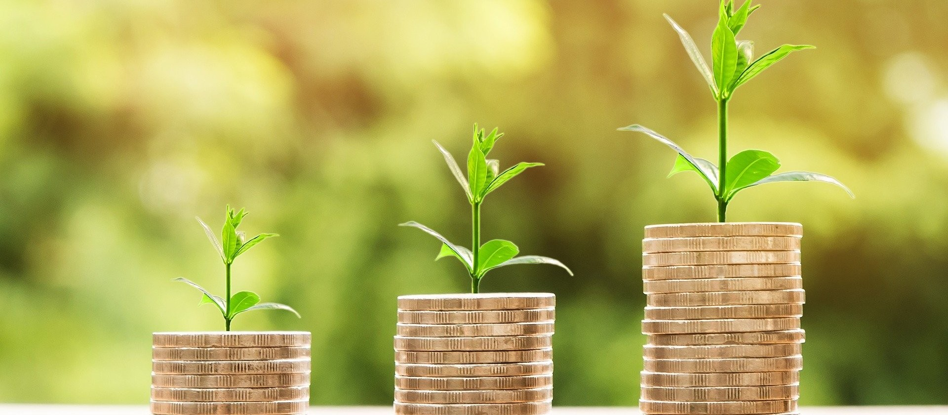 Mercado financeiro e sustentabilidade