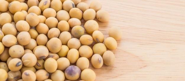 Brasil ultrapassa EUA na  liderança mundial de produção de soja