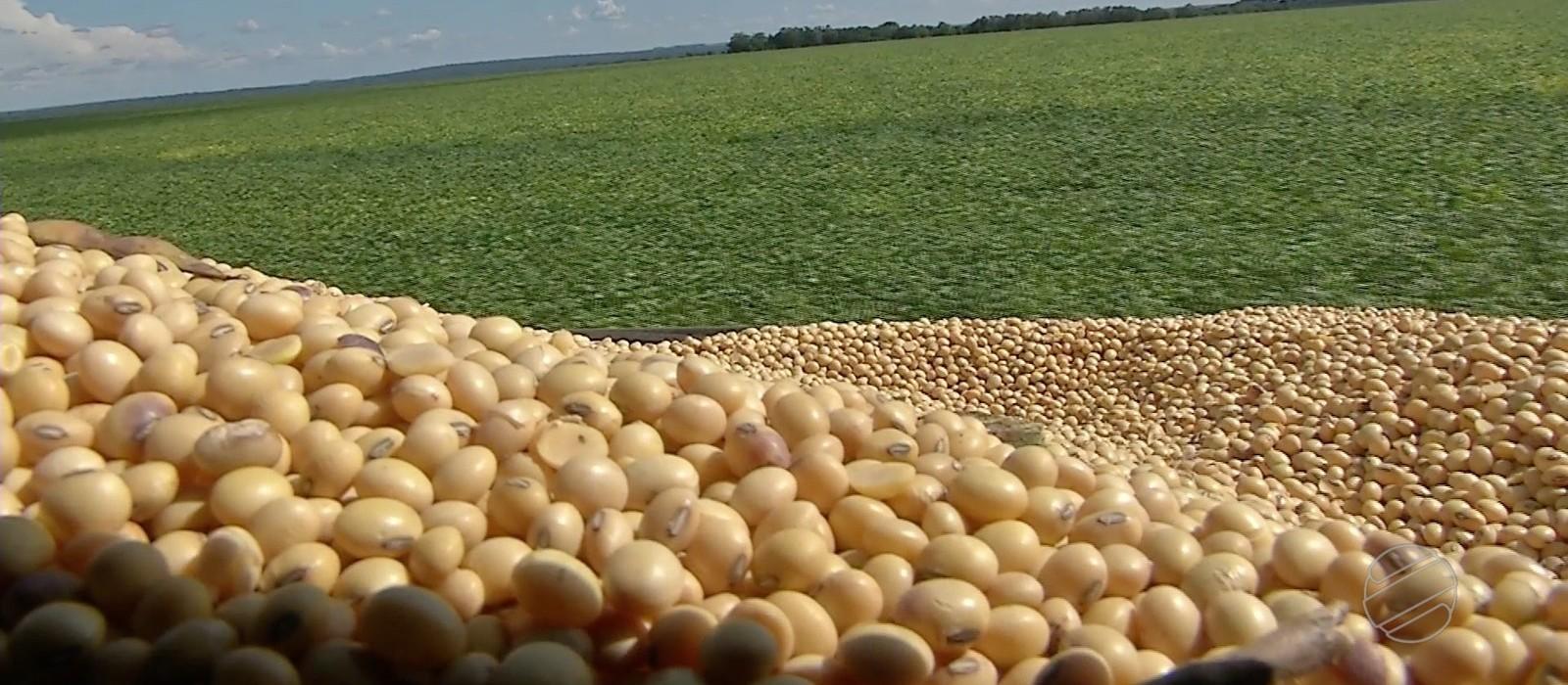 Mato Grosso lidera produção de grãos no país