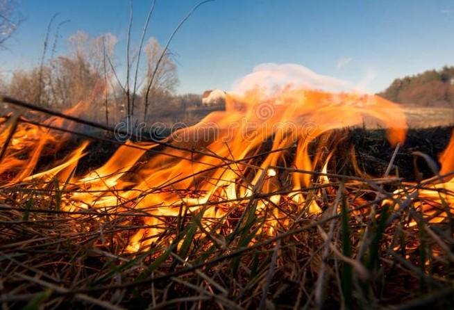 Tempo seco aumenta perigos de queimadas
