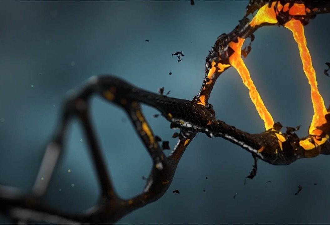 Exame de DNA será realizado de graça no Paraná