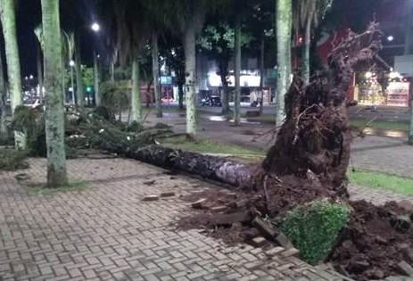 Defesa Civil alerta para risco de chuva intensa e raios