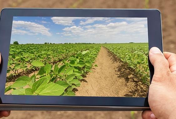 Software é aliado para gestão de propriedades rurais