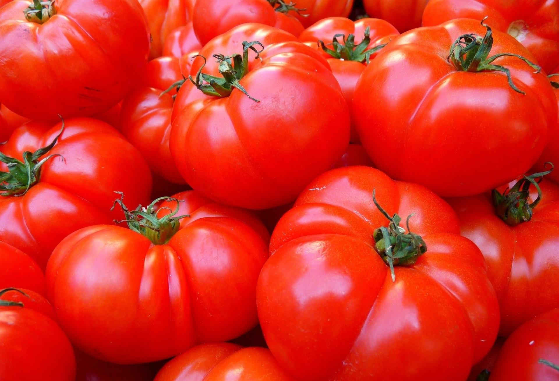 Sobe o preço do tomate no Paraná